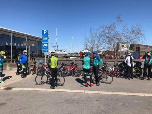 20210424 112400 Pause Roskilde havn